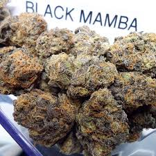 Black mamba [ 30grams ]